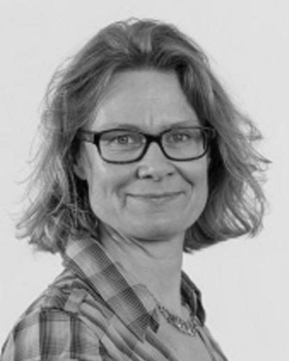 Professor L.J. (Larissa) van den Herik - Chair